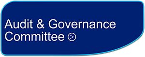 Audit & Governance Committee