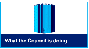 What the Council is doing