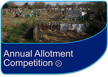 Annual Allotment Competition