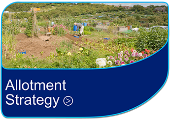 Allotment Strategy