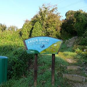 Anson Grove