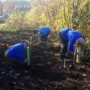 Anson Grove volunteer work