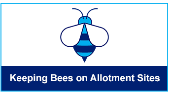 Keeping Bees on Allotment Sites