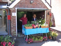 An image of a stall selling plants at the Gardens Open day