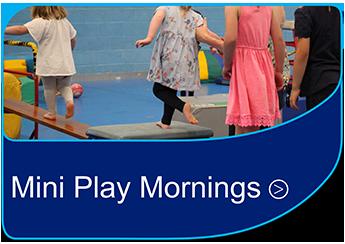 Mini Play Mornings