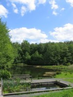 an image of swanwick lakes