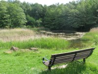 a landscape image of swanwick lakes