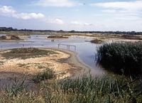 An image of Titchfield Haven