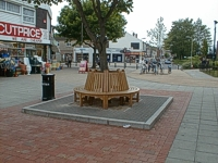 An image of a tree with a circular wooden bench around it.  The bench is on a plinth and the area has been newly paved. There are shops in the background.